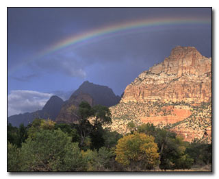 Zion Photograph © Terry